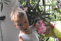 Lubię kwiaty
